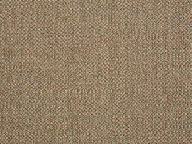 Sunbrella Action Taupe